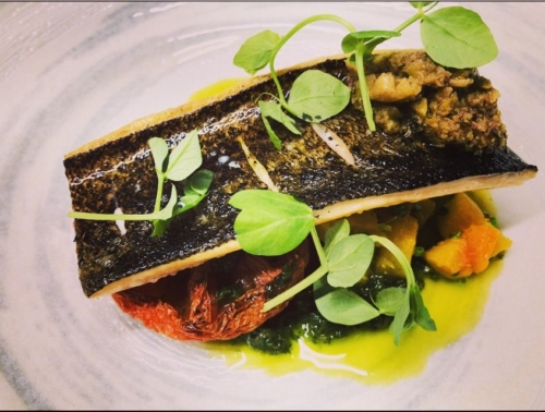 """Cured & torched trout, """"oven dried"""" coeur de boeuf tomato, roasted summer squash, Anise Hyssop pesto, lemon & green olive salsa"""